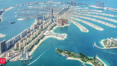 Photo of 여행 금지: UAE는 인도를 포함하여 예방 접종을 받은 거주자의 특정 국가에서 입국 금지를 해제합니다.