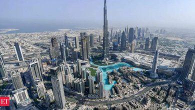 Photo of uae: UAE 민간 부문 근로자의 10%가 5년 안에 에미리트가 되어야 한다고 정부가 밝혔습니다.